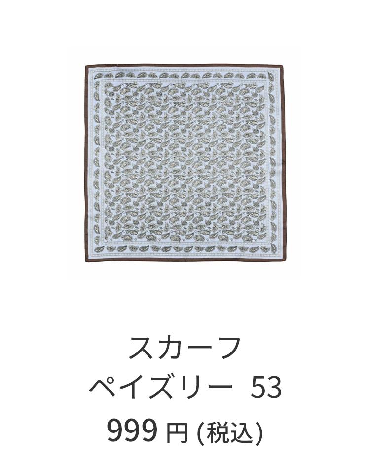 スカーフペイズリー53